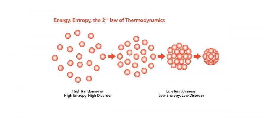 entrophie