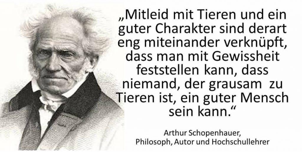 Ein Zitat von A.Schopenhauer in dem er sagt, das keiner der Mitleid mit Tieren hat ein guter Mensch sein kann.