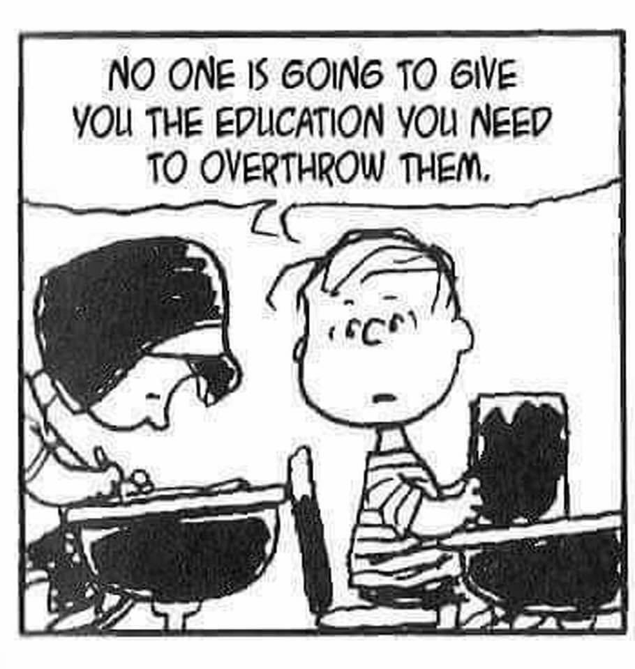 """Eine lustige Figur aus dem Zeichentrickfilmen von Snoopy sagt zu seiner Sitznachbarin in der Schule: """"No one is going to give you the education you need to overthrow them."""""""