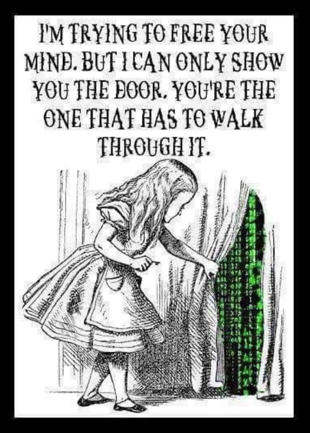 """Bild mit dem Spruch: """"Ich versuche dir zu helfen deinenGeist zu befreien. Aber ich kann dir nur die Türen zeigen. Durchgehen musst du jedoch jeweils selbst."""""""