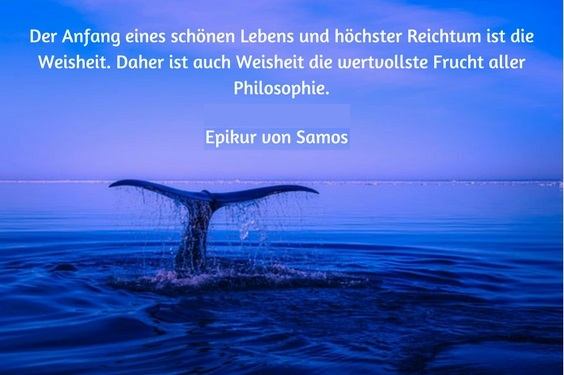 """Walflosse auf weitem schönem Meer, dazu ein Zitat von Epikur: """"Der Anfang eines schönen Lebens und höchster Reichtum ist die Weisheit. Daher ist auch Weisheit die wertvollste Frucht aller Philosophie."""